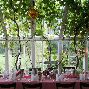 Exlusive Private Dinner @ Orangerie Oberneuland | © www.agave.network