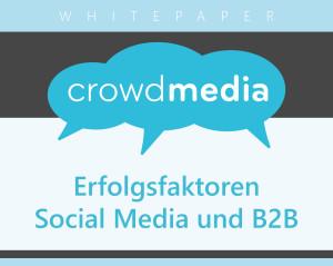 Whitepaper_B2B_SocialMedia_Svenja-Teichmann_crowdmedia_Preview